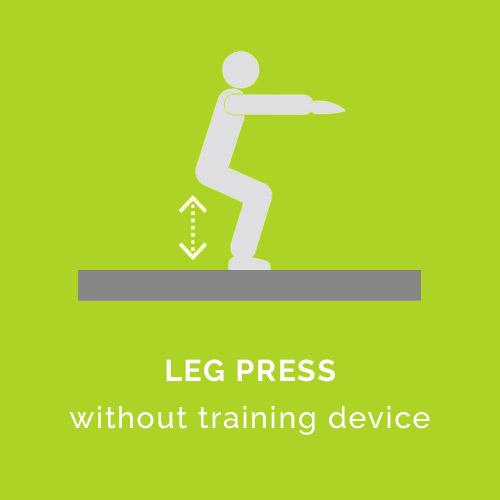 LEG PRESS  without training device